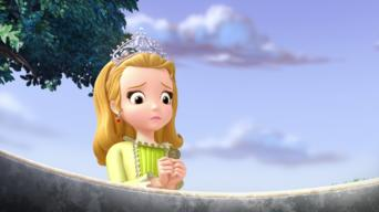 Sofia the First: Season 2: When You Wish upon a Well